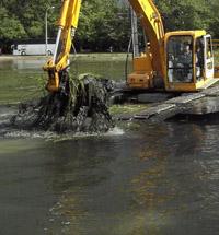 Очистка прудов в санкт-петербурге и области